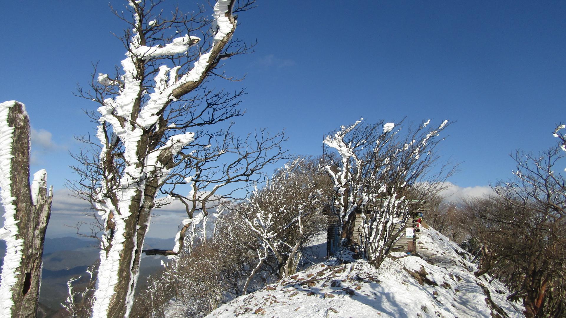 2021 /1『冬景色...